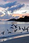 Caneel Bay Sunset at Caneel Beach 2.jpg