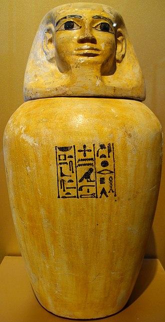 Hapi (Son of Horus) - Image: Canopic jar of Lady Senebtisi