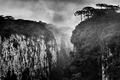 Canyon Itaimbezinho 2.png