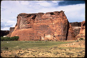 Canyon de Chelly National Monument CACH1064.jpg
