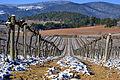 Capçaleres del Foix - 5.jpg
