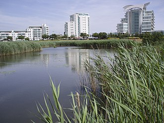 Cardiff Bay Wetlands Reserve - Cardiff Wetlands with St Davids Hotel to the right