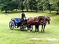Carriage on the Green - geograph.org.uk - 1769513.jpg
