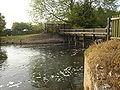 Carthagena Weir1.JPG