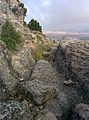 Castellar de Meca 04.jpg