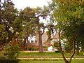 Castelo de Torres Novas (8).JPG