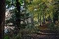 Castleroe Wood near Coleraine - geograph.org.uk - 279709.jpg