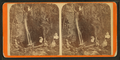 Cave Falls, from Robert N. Dennis collection of stereoscopic views.png