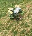 Cemetary flowers.jpg