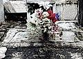 Cemeterio Valladolid, Yucatán 2011 03.jpg