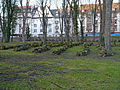 Cemetery-Battonnstrasse-0137-south-north-direction.jpg
