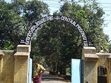 borstal school india