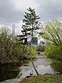 Central Park, New York, NY, USA - panoramio (160).jpg