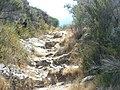 Chemin à Conchiglio (3).jpg