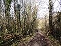 Chemin rural n°34 dit de la Fontaine, Prinvaux, Boigneville 02.jpg