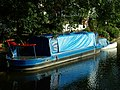 Chesterfield Canal - Narrowboat - geograph.org.uk - 356720.jpg