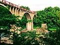 Chichibu bridge 20110703.jpg