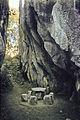 China1982-483.jpg