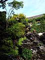Chinese Garden in Sydney (14).jpg