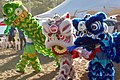 Chinese Lion Dancers .jpg