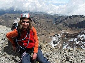 Chogoria valley and climber.jpg