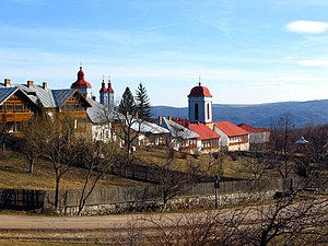 Ciolanu Monastery - Ciolanu Monastery