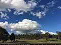 Cirrus Clouds in Autumn.jpg