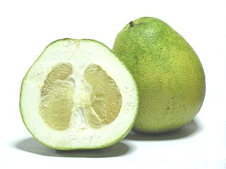 Pomelo - Image: Citrus grandis Honey White