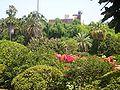 City botanic gardens (QUT).jpg