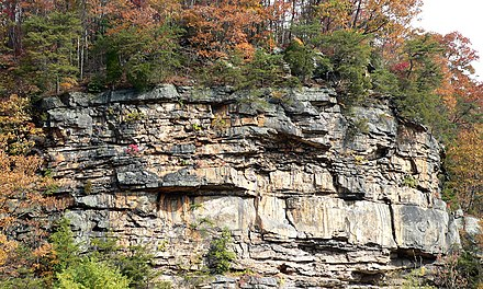 Cliffs overlooking the New River near Gauley Bridge, West Virginia. - Appalachian Mountains