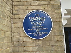 Photo of Frederick Gowland Hopkins blue plaque