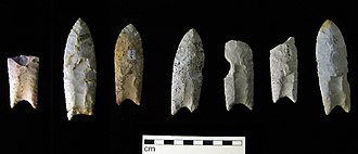 Iowa archaeology - Clovis points from the Rummells-Maske Cache Site, Cedar County, Iowa.