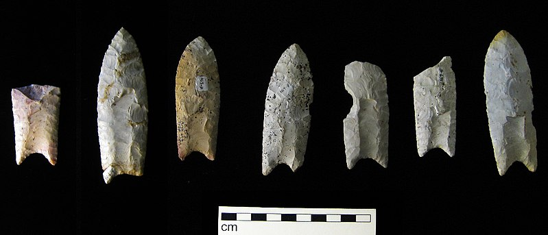 Clovis points from the Rummells-Maske Site, 13CD15, Cedar County, Iowa, These are from the Iowa Office of the State Archaeologist collection.