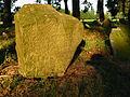 Cmentarz mahometański Studzianka 04 JoannaPyka.JPG