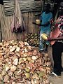 Coconut husks.jpg
