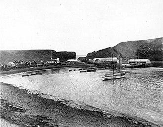 Popof Island - Codfish station at Pirate Cove, June 1912