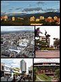 Colage de Armenia-Colombia.jpg