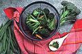 Collander of vegetables.jpg