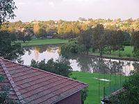 Cooks river Hurlstone Park.jpg
