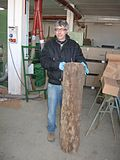Cork industry a sardignia 12.jpg