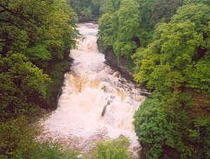 Falls of Clyde (waterfalls) - Image: Corra Linn Falls of Clyde