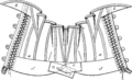 Corset1905 166Fig138.png