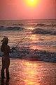 Cory Fishing in Sea (2569540488).jpg