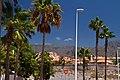 Costa Adeje, Santa Cruz de Tenerife, Spain - panoramio (25).jpg