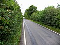 Country lane to the north - geograph.org.uk - 534206.jpg
