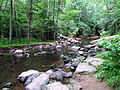 Crabtree Creek Mill Trail Umstead SP 3347 (5893918545) (2).jpg