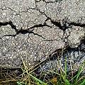 Cracks - Flickr - Stiller Beobachter (1).jpg