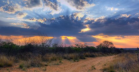 Crepuscular rays at Sunset near Waterberg Plateau in Namibia