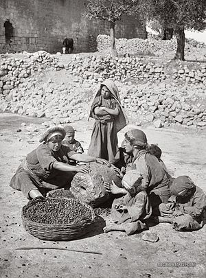Olive production in Palestine - Palestinian women crushing olives in order to make olive oil, 1900-1920.