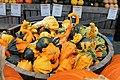 Cucurbita pepo ornamental gourds - 14.Autumn.WholeFoods.1440P.NW.WDC.14October2014.jpg